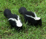 Skunk Removal Lake Forest